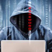 Des hackers sous contrat