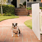 So schützen Sie Ihr Smart Home