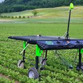 Der Bauer wird digitalisiert