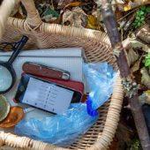 A caccia di funghi con un'app per smartphone