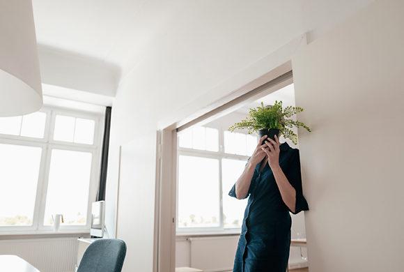 Le piante contribuiscono a creare condizioni climatiche eccellenti presso la vostra postazione di lavoro a casa