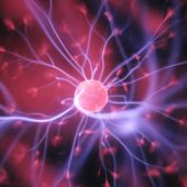 Sinapsi nel cervello
