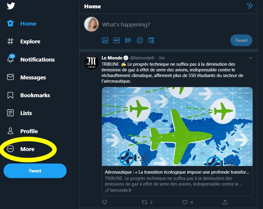 """In der Twitter-Webansicht links im Menu ist der Punkt """"Mehr"""" gelb markiert."""