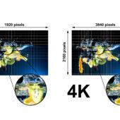 Bild zeigt den Unterschied zwischen 4K und HD. Links ist Kiwi unscharf (HD) rechts scharf (4K).